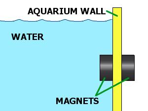 Aquarium Magnets